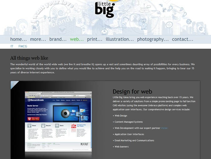 web design and umbraco development by little big ideas_Large.jpg